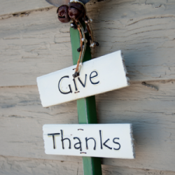 GiveThanks - The Cottage Counseling Experience